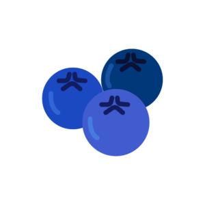 myrtille-bleuet